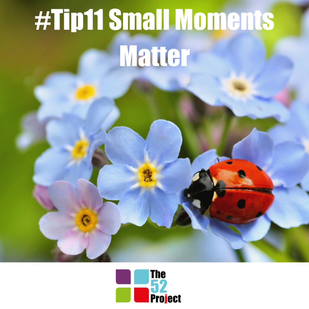 small moments matter, nature, wellbeing, mood, the 52 project, 52 tips, community wellbeing project, iain price, dulcie swanston