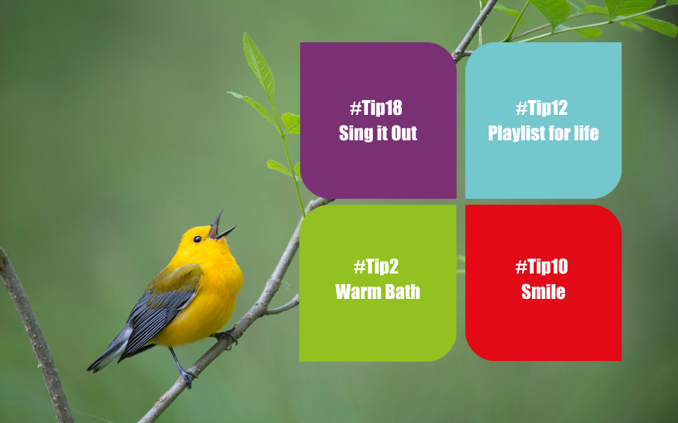 sing, singing, habit stacking, the 52 project, 52 tips, wellbeing, mental health, cathy hart