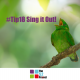 singing, sing it out, singing is good for you, neuroscience, wellbeing, community wellbeing project, the 52 project, 52 tips, tip 18, its not bloody rocket science, think it out, singing for fun